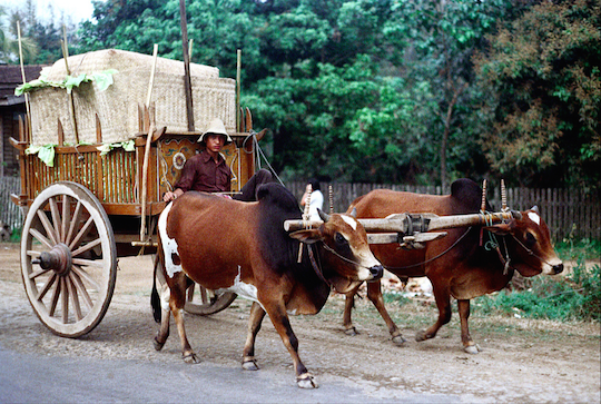 Nick DeWolf shot this picture on a road near Chiang Mai during his holiday in 1972
