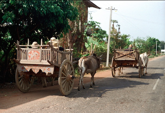 Rural road outside Chiang Mai with two ox carts, 1972. Picture by Nick DeWolf.