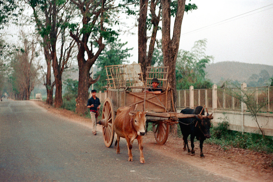 Nick DeWolf took this great oxcart picture in 1972, Chiang Mai