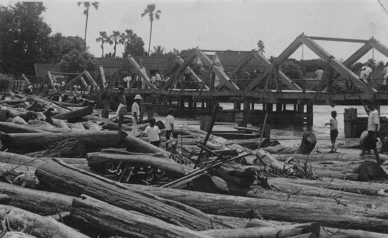 Picture by Morinosuke Tanaka. Teak logs piled up.