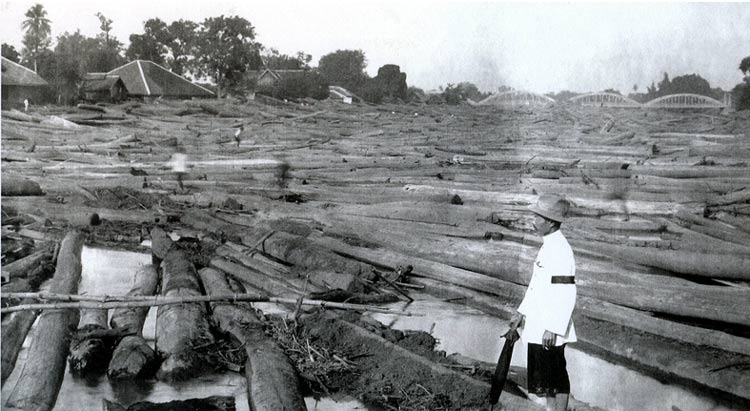 Logs in the Wang River, ca. 1930
