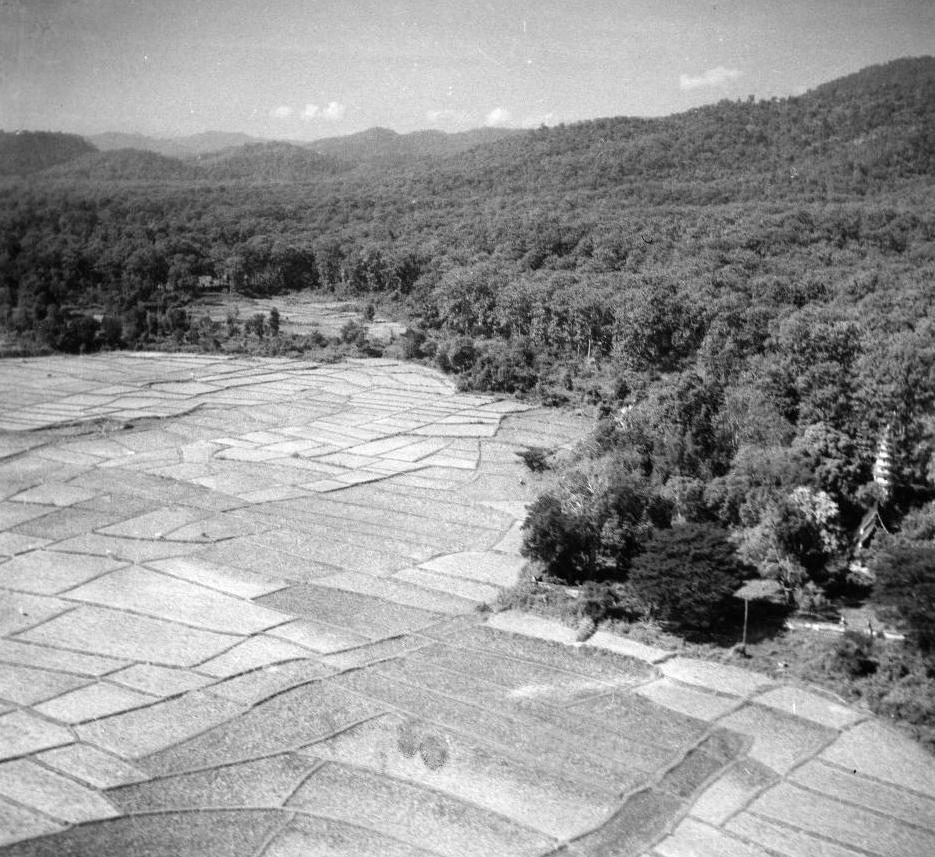 Aerial View of Wat Rampung