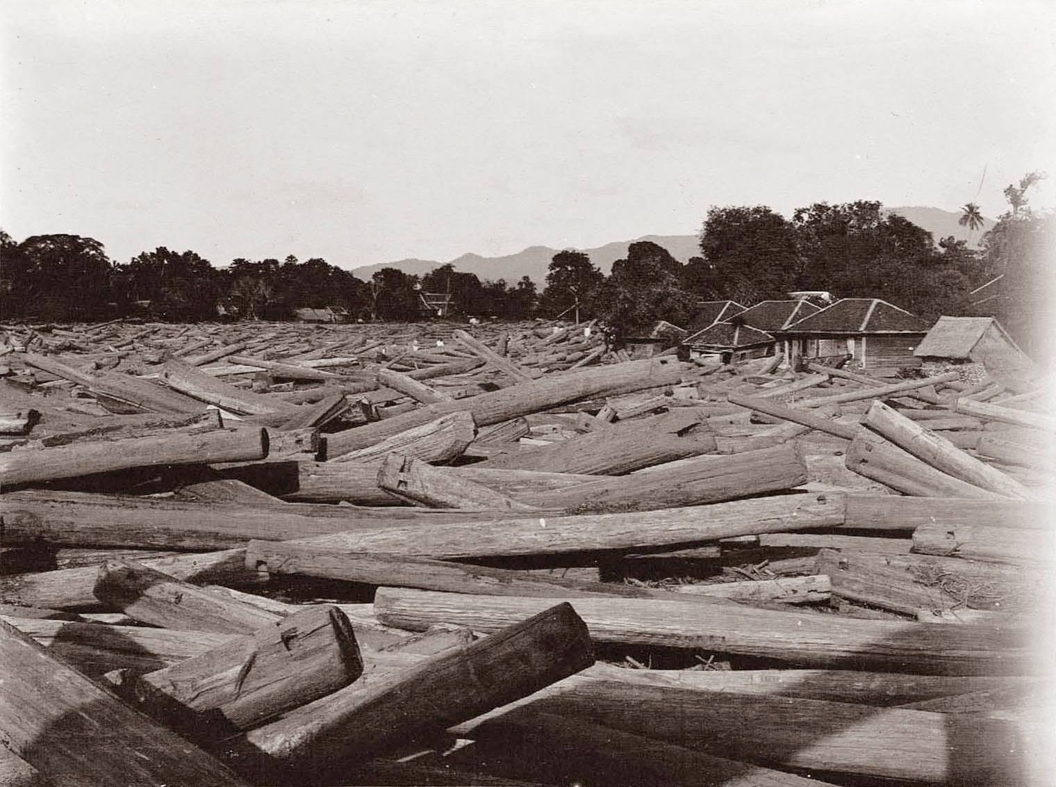 Teak logs in the Wang River. Picture probably taken from the Rachadapisek Bridge. Ca.1920. Picture Changton Natee.
